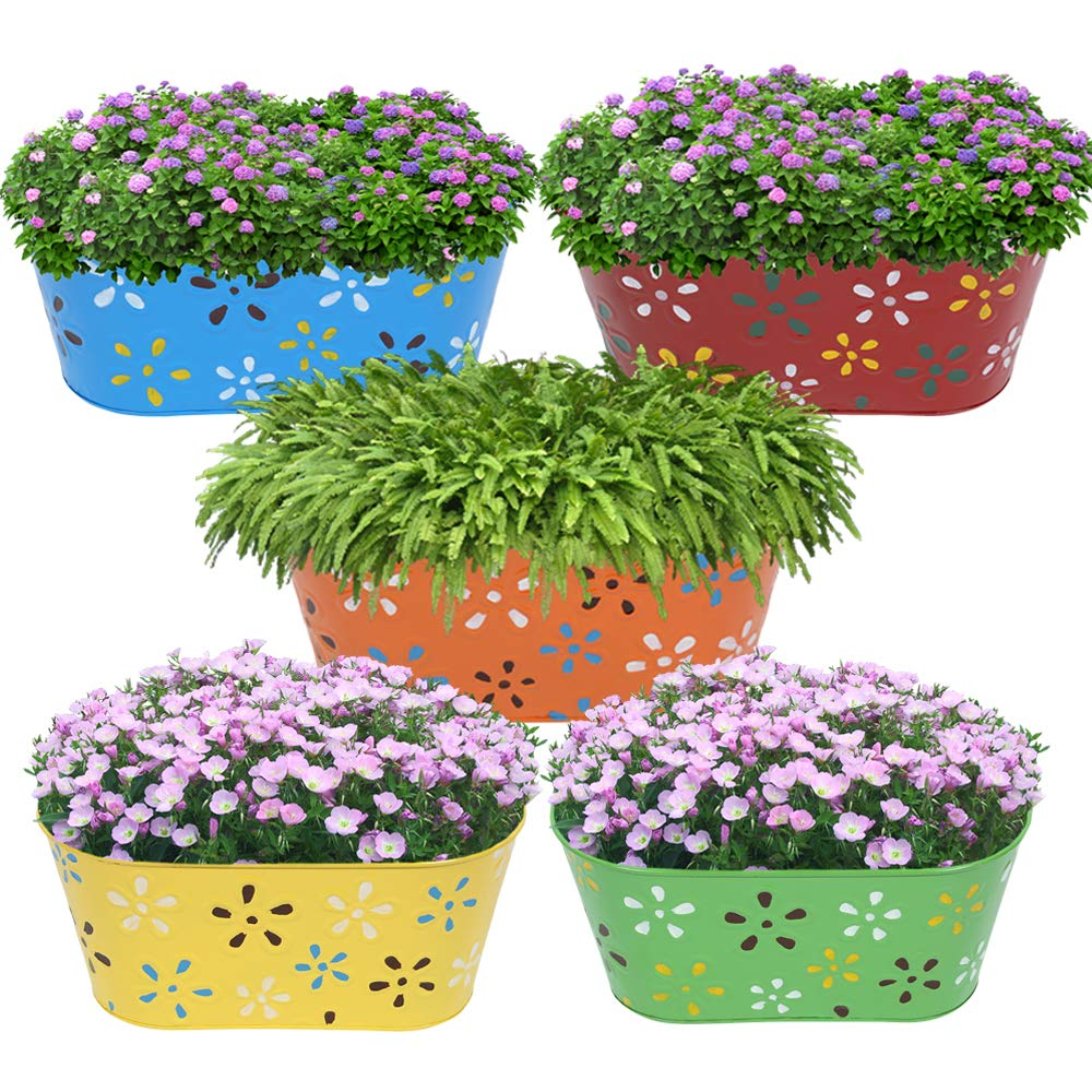 Premium Collection Oval Metal Hanging Planter