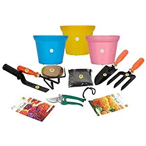 flower-all-in-one-kit-3-pieces-flower-pots-3-2-flower-seeds-packets-cocopeat-100gm-neem-organic-manure-1kg-5-piece-tool-kit