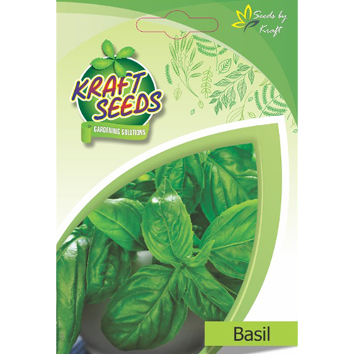 basil-herb-seeds-non-gmo-seeds-pack-for-home-and-balcony-gardening