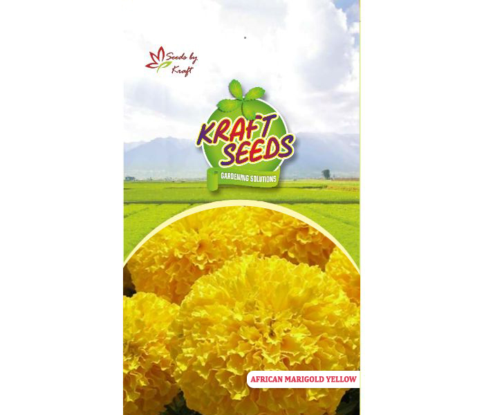 African Marigold Yellow Flower Seeds Pack