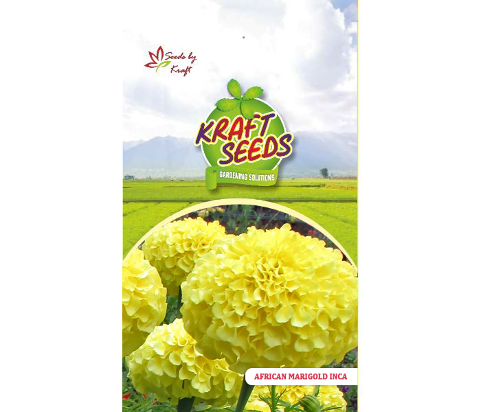 african-marigold-inca-flower-seeds-pack-for-home-and-balcony-gardening