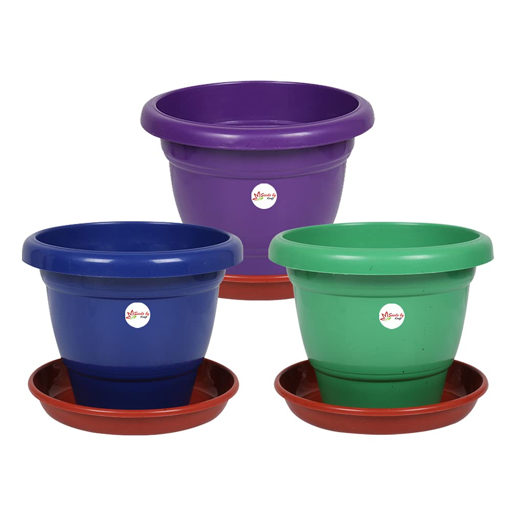 Kraft Seeds Plastic Pot with Tray, Multicolour, 12-inch, Pack of 3