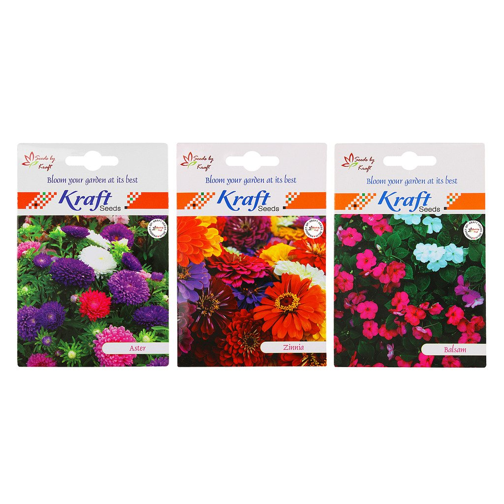 Kraft Seeds Balsam Tom Thumb Mix and Zinnia Mix and Aster Mix 3 in 1 Flower Seed Combo (Pack of 3)