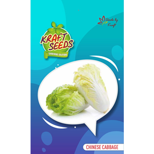 chinese-cabbage-seeds