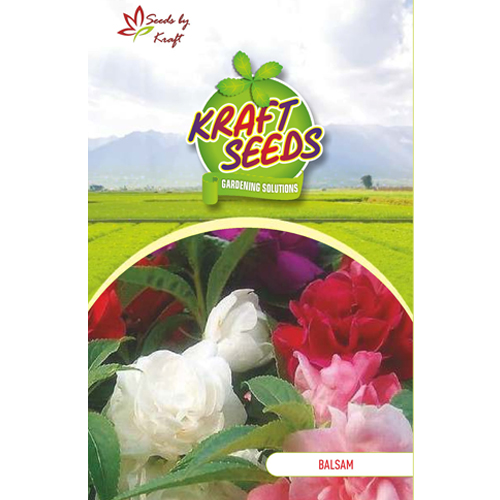 balsam-tom-thumb-mix-flower-seeds-pack-for-home-and-balcony-gardening