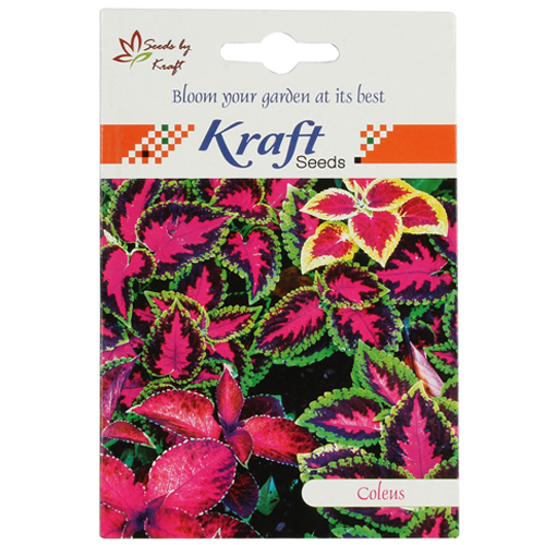 coleus-mix-flower-seeds-pack-for-home-and-balcony-gardening