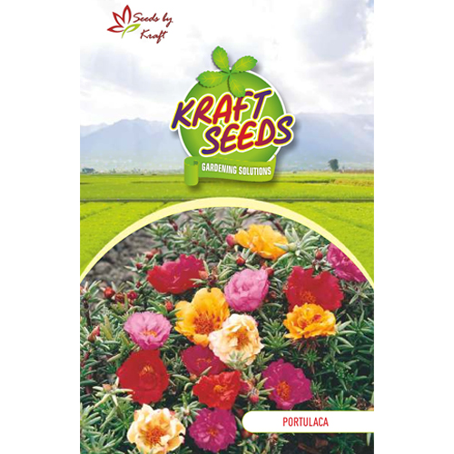 portulaca-k-s-spl-mix-flower-seeds-pack-for-home-and-balcony-gardening