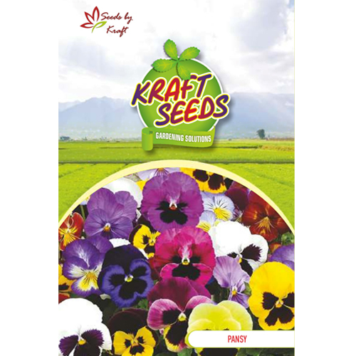 pansy-mix-flower-seeds-pack-for-home-and-balcony-gardening