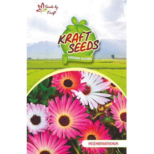 mesembryanthemum-ice-flower-mix-flower-seeds-pack-for-home-and-balcony-gardening