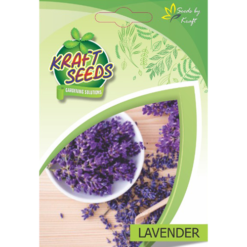 lavender-herb-seeds-non-gmo-seeds-pack-for-home-and-balcony-gardening