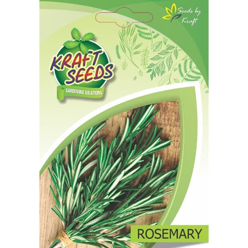 rosemary-herb-seeds-non-gmo-seeds-pack-for-home-and-balcony-gardening