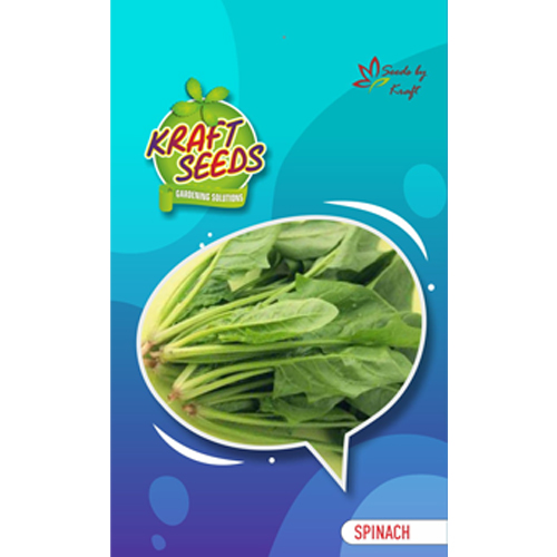 spinach-seeds
