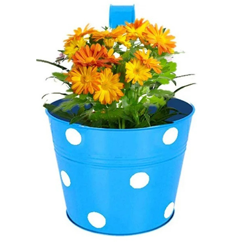 round-shaped-dotted-railing-planters-multicolour-for-balcony-and-home-gardening-2-pots