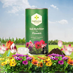 Soil Nutrition for All Kinds of Flowers Anaerobically digested Biomass Organic Manure