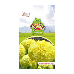 African Marigold Inca Flower Seeds Pack for Home and Balcony Gardening
