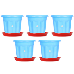 6-inch Victoria Pot Colour Blue  ( Set of 5 pots)with tray