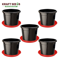 8-inch Plastic Seedlings Black Nursery Pot Planter Container Seed Starting Pot (5 pots+ Tray)