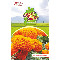 African Marigold Orange Flower Seeds Pack for Home and Balcony Gardening