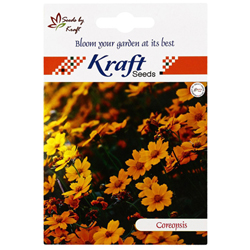 COREOPSIS SUNRAY Flower Seeds Pack for Home and Balcony Gardening