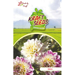 DAHLIA TOP STAR MIX Flower Seeds Pack for Home and Balcony Gardening