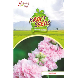 HOLLYHOCK Flower Seeds Pack for Home and Balcony Gardening