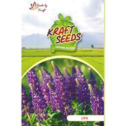 LUPIN RUSSELL NOBLE Flower Seeds Pack for Home and Balcony Gardening