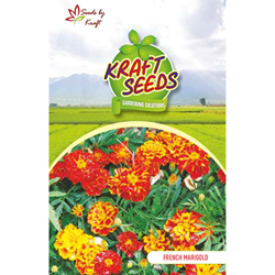 FRENCH MARIGOLD Flower Seeds Pack for Home and Balcony Gardening