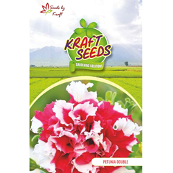 PETUNIA K-S SPL MIX Flower Seeds Pack for Home and Balcony Gardening