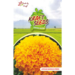 African Marigold Mix Flower Seeds Pack for Home and Balcony Gardening