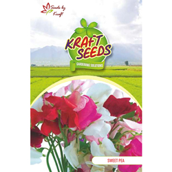 SWEET PEA PEAR MIXTURE Flower Seeds Pack for Home and Balcony Gardening