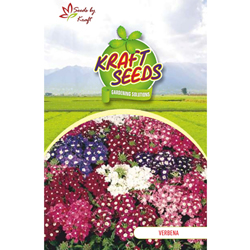 VERBENA MIX Flower Seeds Pack for Home and Balcony Gardening