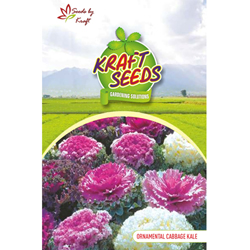 ORNAMENTAL CABBAGE / KALE K-S SPL MIX Flower Seeds Pack for Home and Balcony Gardening