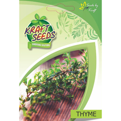 Thyme Herb Seeds NON-GMO seeds pack for Home and Balcony Gardening