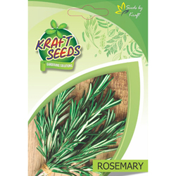 Rosemary Herb Seeds NON-GMO Seeds Pack for Home and Balcony Gardening