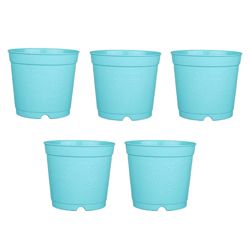6-inch Plastic Seedlings Sky Blue Colour Nursery Pot Planter Container Seed Starting Pot (5 pots)