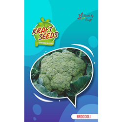 Broccoli calabrese English Vegetable Seeds for Sprouting
